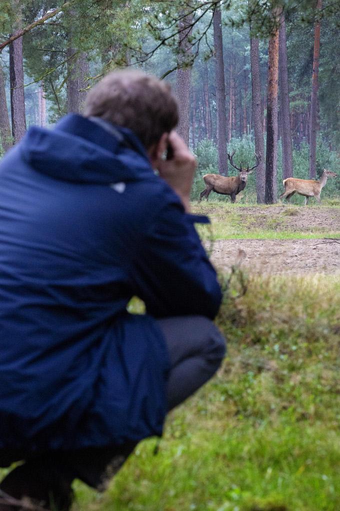 Alex van Hooff gaat graag de natuur in met zijn kinderen. Het luisteren naar het burlen van de herten in het Nationale Park de Hoge Veluwe staat elk jaar op het programma