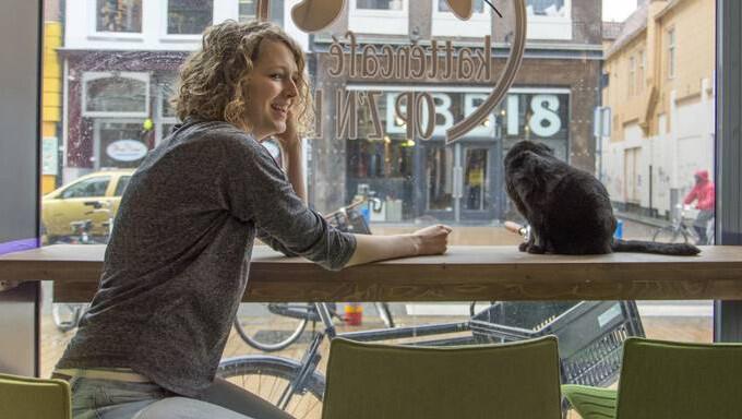 Hielkje Wester (Kattencafé Op z'n kop): 'Crowdfunding is eigenlijk verkapte marketing. Je weet gelijk of er belangstelling is'