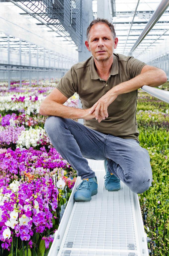 Voortdurend vernieuwen. Als je als orchideeënkweker zoals Richard ter Laak het hoofd boven water wil houden moet je wel innovatief en creatief zijn