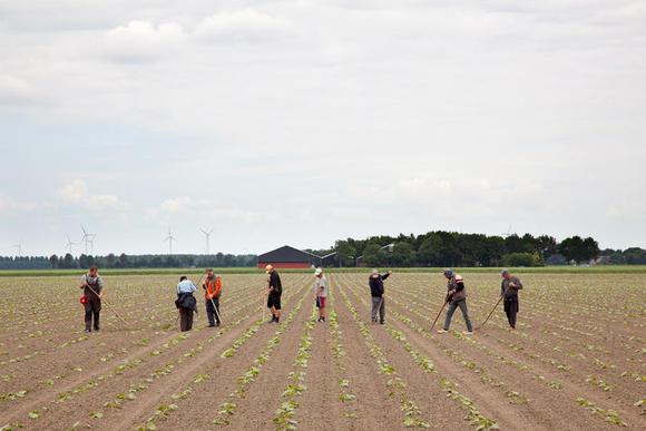 Poolse arbeiders werken op het land