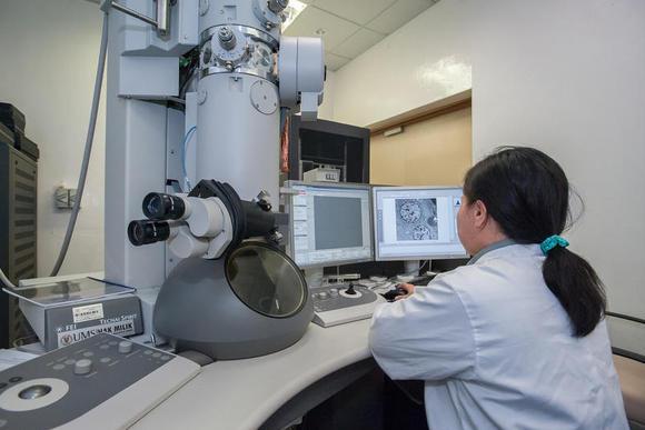 Versnippering onderzoeksgeld ondermijnt slagkracht sleuteltechnologie