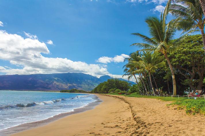 Zeeland, Hawaii of toch naar Portugal? Zó brengen ceo's hun zomer door