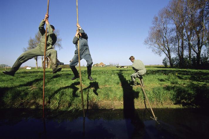 7 survivaltips voor de Nederlandse agrofoodsector